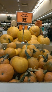 Sugar pumpkins!!!